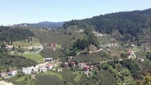 Hırsızlar Gölköy'ün Kozören Köyünde evlere dadandı