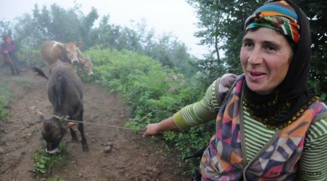 Karadenizli kadınlar her mevsim çalışkan