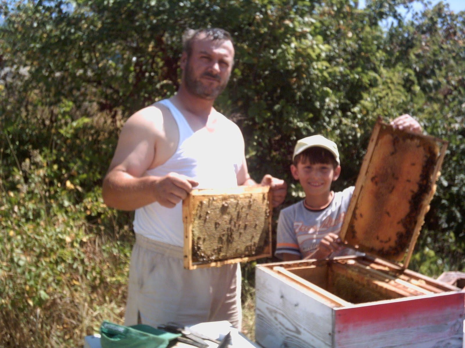 Bal üreticileri Kafkas ırkı arılarını tanıttı