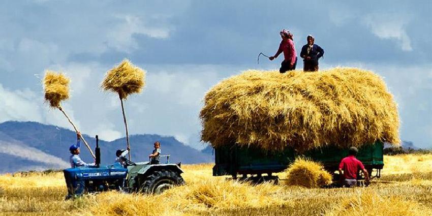 İşte Türkiye'de Tarımın hal-i pürmelali