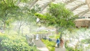 Artvin'de Botanik Bahçesi kuruluyor