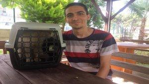 Fuel-oil dolu kuyudan kedisini kurtaran genç AFAD gönüllüsü oldu