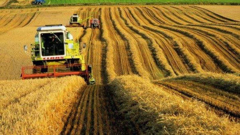 Tarım ÜFE, temmuz ayında geçen yılın aynı ayına göre yüzde 22.83 yükseldi