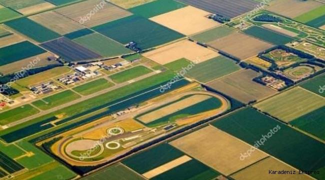 HOLLANDA tarım politikasından küçük bir kesit