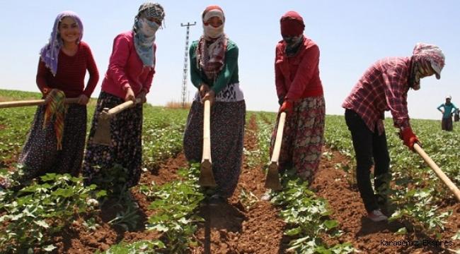 Kırsaldaki kadınlara bakanlık desteği