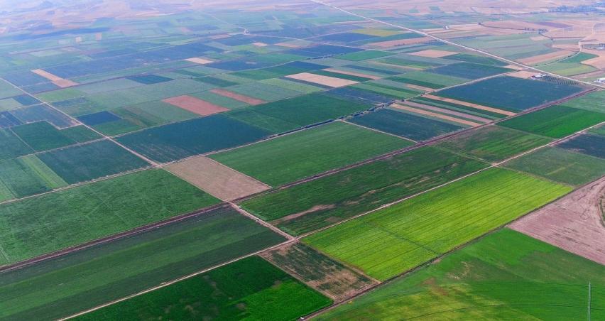 Samsun'da 'TARSİM' kapsamında çiftçiye 13,5 milyon TL devlet desteği
