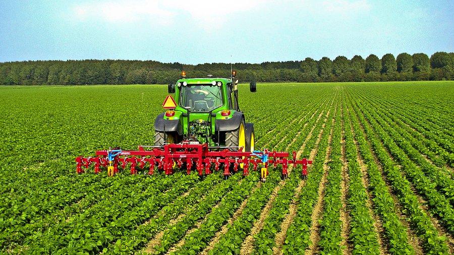 Koronavirüs Korkusu Uluslararası Tarım Ürünleri Ticaretine de Yansıdı