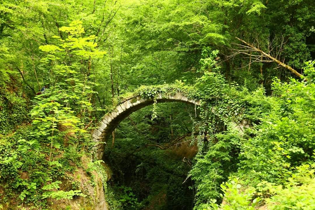 Artvin'in Borçka ilçesi Deviskel Vadisi içerisinde bulunan tarihi Banakna kemer köprüsü tarihe meydan okuyor