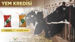 Tarım Krediden Kurban vadeli yem kampanyası