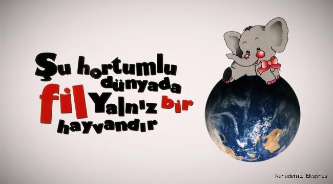 Ahmet Şerif İzgören/Şu hortumlu dünyada fil yalnız bir hayvandır - 1