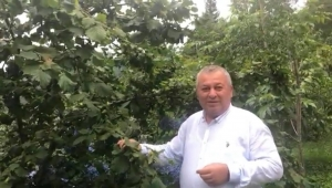 Enginyurt: Tarım Bakanı eleştirimden sonra bunu bekliyordum