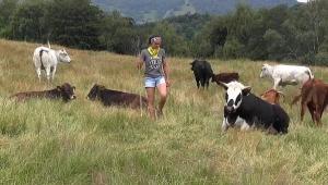 İtalya'da şehir hayatından yorulan gençler tarım mesleklerine yöneliyor