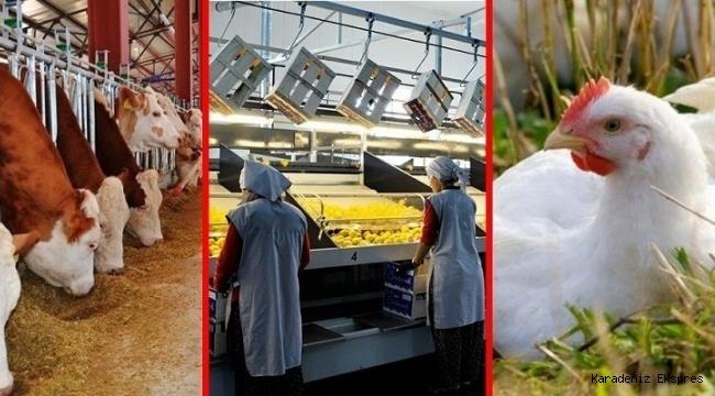 Kırsal kalkınma için 71 projeye 71 milyon lira hibe