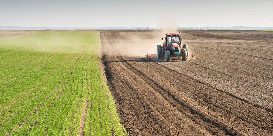 Yeni Şafak yazarı hükümetin tarım politikasını bu sözlerle eleştirdi!