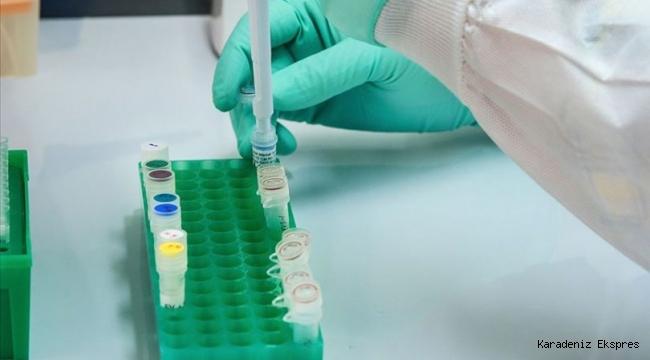Dünyada bir ilk!.. Türkiye Koronavirüs ilacı üretti