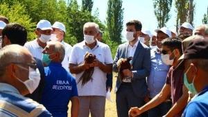 Erbaa'da keklik ve sülünler doğaya bırakıldı