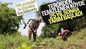 Hakkari'de terörden temizlenen bölgelerde tarım başladı
