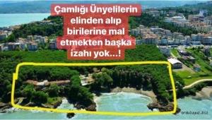 Ünye de 'Çamlık projesi' ile ilgili basın açıklaması..