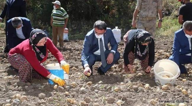 Tokat valisi Ozan Balcı Başçiftlik'te incelemelerde bulundu