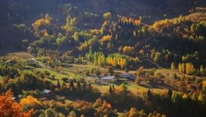 Artvin'den Muhteşem Sonbahar Fotoğrafları