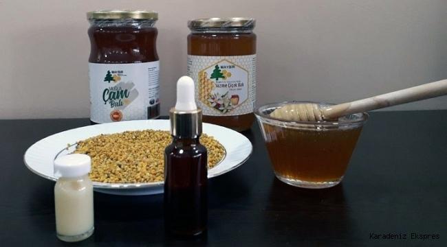 Pandemi arı ürünlerine talebi patlattı!