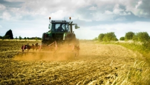 Tarım ürünleri üretici fiyatları yıllık yüzde 18.48 arttı