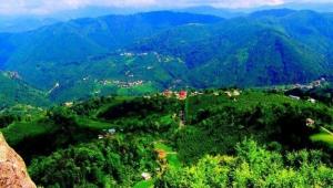 Gölköy Şıhmanlı Şeyh İmam ve Köyün Manevi tarihi..