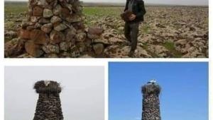 Köylülerin 'Değişik biri' dediği Diyarbakırlı çoban, her yere taştan kuleler yapıyor