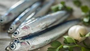 Hamsi balık değildir, Yaşam kültürüdür...