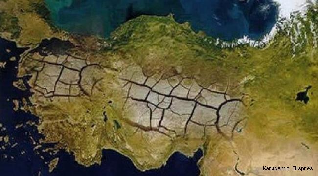 Uzmanlara Göre İstanbul'un Biyolojik Ritmi Bozuldu; İklimimiz de Tropikal Oldu
