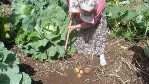 2021 Yılı Çiftçiye gübre, mazot, tarımsal destek ödemesi ne zaman hangi tarihte verilecek?
