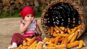 Bekir Pakdemirli: Mayıstan Sonra Gıda Fiyatları Düşer