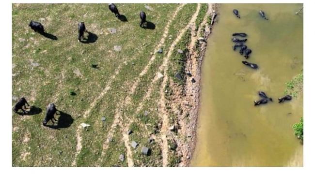 Kanal İstanbul güzergahındaki çiftçilerin tahliyesi isteniyor...