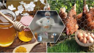 Hayvansal Gıdalarda Kalıntı İzleme Denetimleri Devam Ediyor