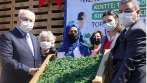 İzmir'de yerli tohumlardan elde edilen sebze fideleri 15 bin kadına dağıtılıyor