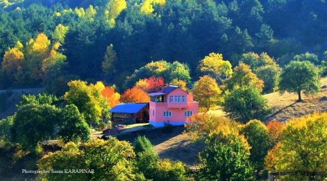 Köye dönüş kolaylaştırılmalı; köyde yaşam teşvik edilmeli..