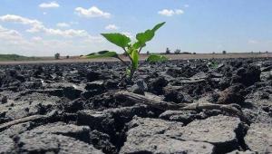 'Paramız olsa bile tarım ürünlerini alamayacağız; çünkü ürün olmayacak'