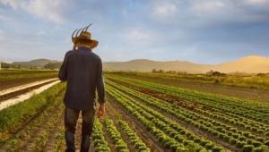 Zarar TARİŞ'in borç çiftçinin