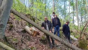 Adıgüzel : Ormanlarda seri katiller var