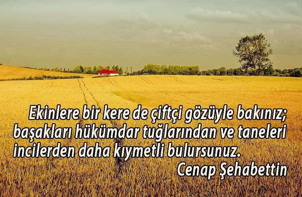 Çiftçi, toprağa koyduğu her tohuma umutlarınıda koyar