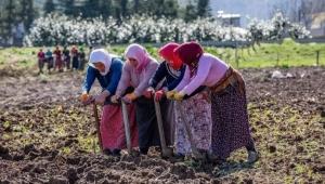 ''Çiftçimiz Alması Gereken Desteği Alamıyor''