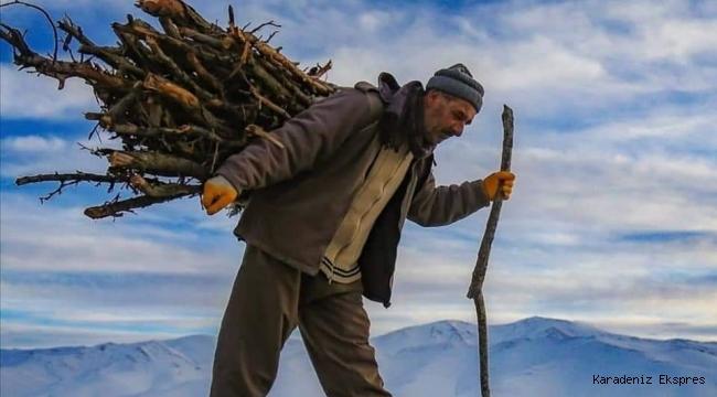 Orman genel müdürlüğü tapulu arazilere bahçe kurulumu için hibe desteği veriyor