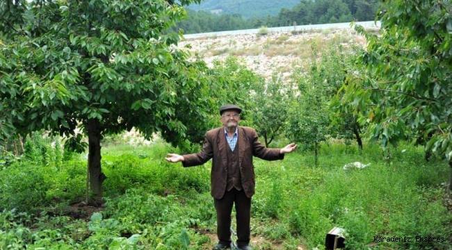 Ülkemizde yeni gündeme gelen Gıda Ormanlarının belkide ilk örneği..