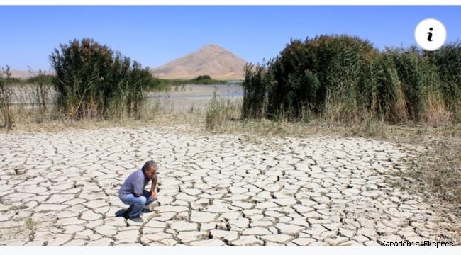 60 yılda 70'e yakın göl kurudu! Ağaç su yoksa hayat yok!!