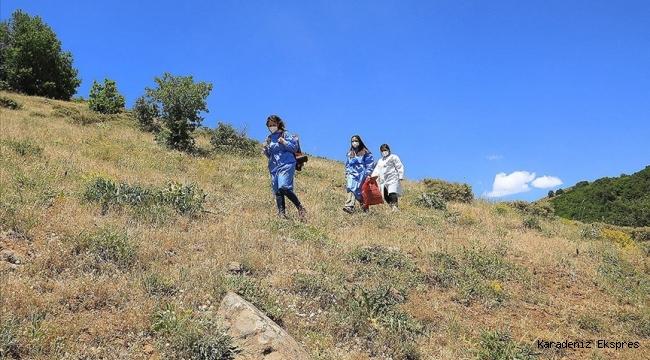 Bup Dağı'nı aşan sağlık ekipleri 1700 rakımdaki Kartal Yaylası'nda arıcıları aşıladı
