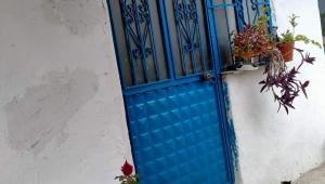Kapı ve pencereler neden mavi renge boyanır?