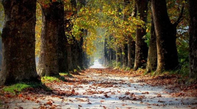 Koşarak Gideceğiniz, Batı Karadeniz'de Yer Alan 13 Kaçış Noktası