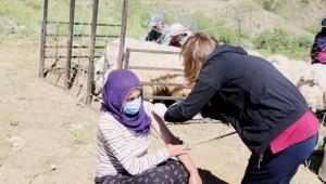 Yaylada Korona aşısı