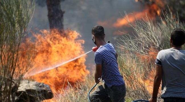 AFAD'dan yangınlardaki son duruma ilişkin açıklama