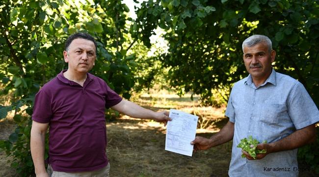 Çiftçilerin emekleri TARSİM sayesinde güvende